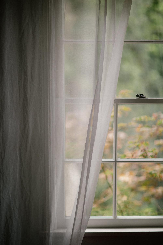 Rainy day window veiw